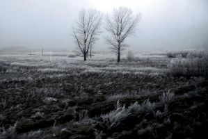 White is the Winter by Kennysz