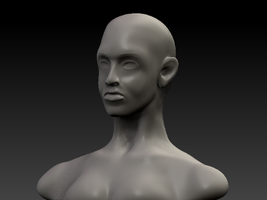 Female Bust WIP in ZB4 by 2753Productions