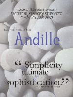 Andille Typeface Poster 1 by ncfwhitetigress
