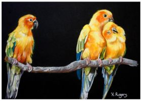 Three Yellow Birds by Helenr251