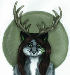 Avatar for Shilven by AutumnWindFoxy