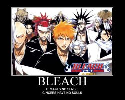 Bleach by TheIronWillAlchemist