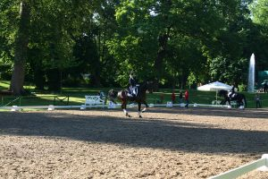 Dressage Arena Stock 1 by LuDa-Stock