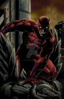 DareDevil by 1314