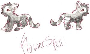 Flower-Spell ref. 4 shadowclan by ChrystalStarWolf
