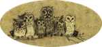 Owlies by blue-melody