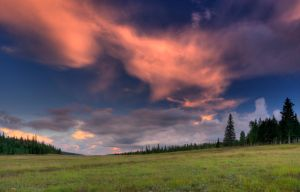 Kaibab Meadow Sunset by EvaMcDermott