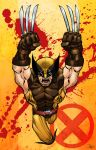 Wolverine by WillJonesArt
