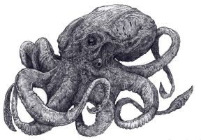 Octopus by Prinsler