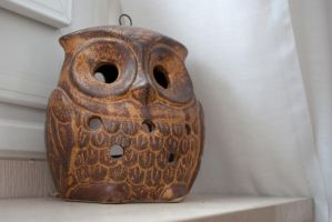 Wood owl by d0gma