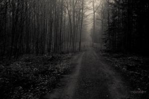 A Lonely Path by Creative--Dragon