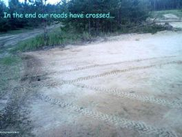 Our roads have crossed by Naddie13