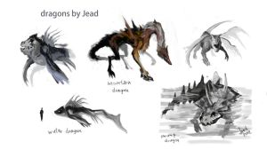 Dragon Concepts by Bomb-a-Jead