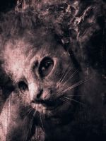 SelfPortrait::CatMask by IMOptimistic