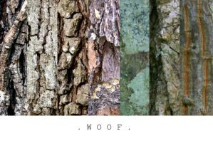 Bark Texture Pack by MLStock