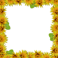 Flower Frame Overlay 2 by HGGraphicDesigns