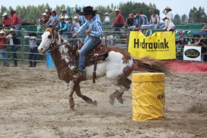 Taupo Rodeo 85 by Sooty-Bunnie