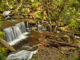 Ricketts Glen State Park 75 by Dracoart-Stock