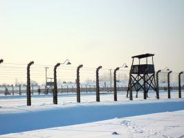 birkenau by smallone1989