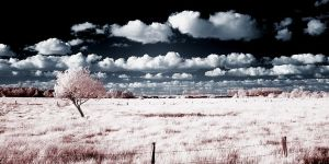Clouds infrared ... by MichiLauke