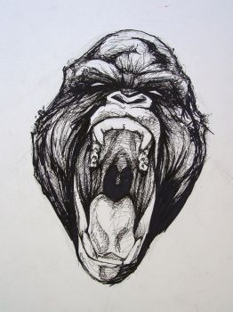Gorilla pen and ink 3 by Kylehailey