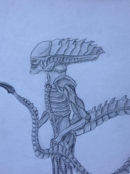 Another Xeno by Cloudman313