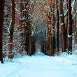 Snowroad by WouterPera