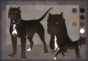 STS Dog - Uno by ShockTherapyStables