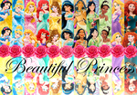 Disney Princesses - Graceful And Charming by BeautifPrincessBelle