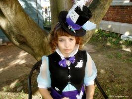 Hatter: Mad by dollphinwing