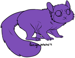 Sugarglider Lines by foreign-potato
