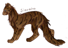 Clouded Leopard by Joava