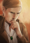 ERWIN : CONSIDERATION by rixal