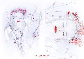 Ice Queen by LilifIlane