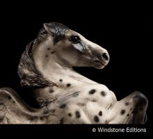 Leopard appaloosa Pegasus by Reptangle