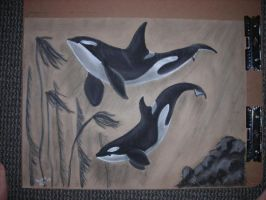 Orcas in Charcoal by brassgirl