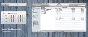 Nuala iTunes 10 for Windows by Masaliukas