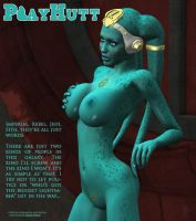 Playhutt Pinup - Star Wars by chimera46