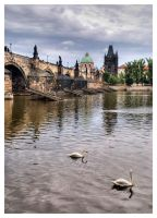 Charles bridge by joffo1