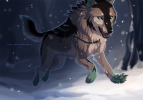 Through Night and Cold by Singarl