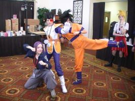 A2F 2010 Dragon Ball Z Canons by JaneReaction