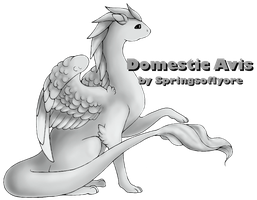 Domestic Avis Marking Contest - Winners announced! by SpringsofIyore