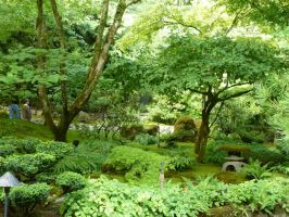 Japanese Garden 7 by raindroppe