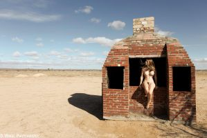 Brick House by dwingephotography