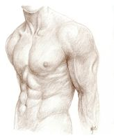 Male Figure Study by LevonHackensaw