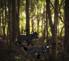 Nyx and Shadow, Pups of the Gorge Pack by TheDiamondLucario