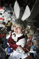 APH - Mad March Hare by Prussiya