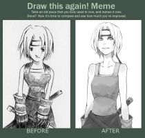 Before - After Meme by Rousteinire