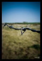 Freedom is on the other side by Mademoiselle-P