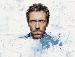 House MD wall by Quincula